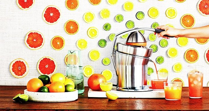 Breville 800CPXL Die-Cast Stainless Steel Citrus Press Review