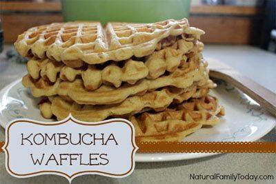 Kombucha Waffles (Dairy Free)