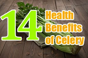 The 14 Amazing Health Benefits of Celery
