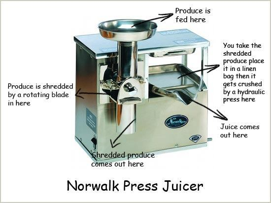 Norwalk Press Illustration