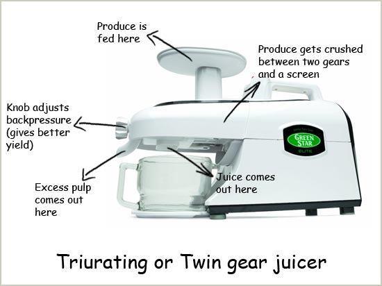 Twin Gear Illustration